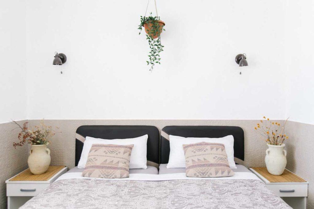 Room-1-plants-mahakala-center